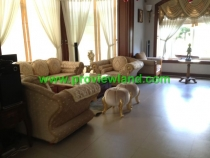 Villa for sale in District 7- Villa  Phu Gia - 582 m2