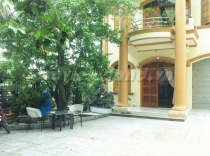 Villa An Phu for rent, 11x15m 4 bedrooms, District 2